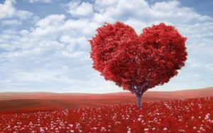 Как можно найти свою любовь